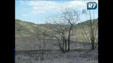 Raio causa incêndio florestal em Mata Jardim (RJ) - Notícias - R7 ...