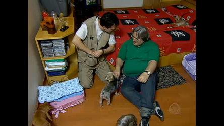 Leão Lobo pede ajuda ao Dr. Pet para educar os cães na hora de ...