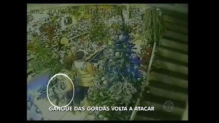 """""""Gangue das gordas"""" rouba lojas no Brás, em São Paulo - Record ..."""