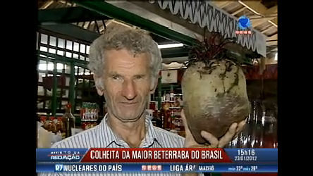 Produtor paranaense colhe a maior beterraba do Brasil - Record ...