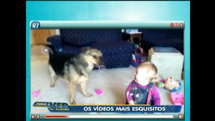 Bebê morre de rir com cachorro e bolas de sabão - Rede Record