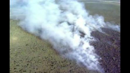 Incêndio consome 16 hectares de área da Marinha em Santa Maria ...