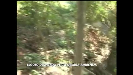 Esgoto é despejado perto de área ambiental - Distrito Federal - R7 ...