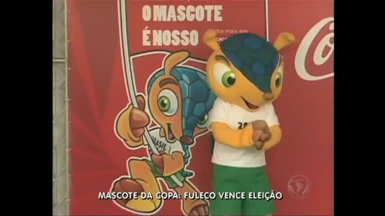 Mascote da Copa: Fuleco ganha eleição - Rio de Janeiro - R7 RJ no ...