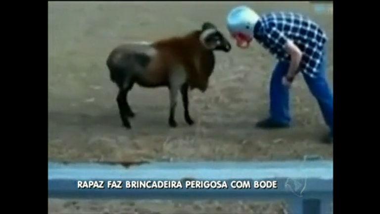 Rapaz faz brincadeira perigosa com carneiro - Distrito Federal - R7 ...