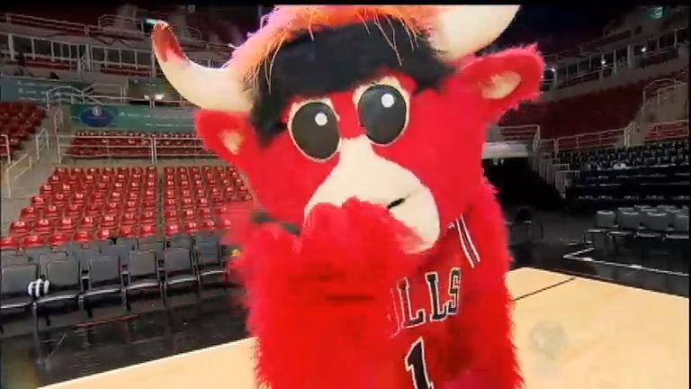 Conheça Benny the Bull, o mascote que promete fazer sucesso com ...