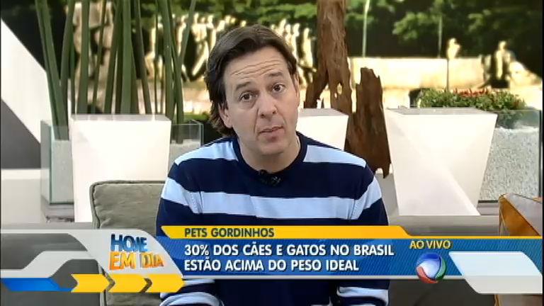 Cães e gatos brasileiros estão acima do peso - Entretenimento - R7 ...