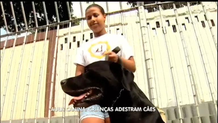 Aula em dose dupla: crianças aprendem como adestrar cães ...