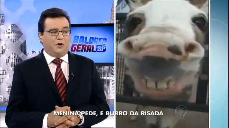 Burro atende a pedidos e dá risada - Notícias - R7 Balanço Geral