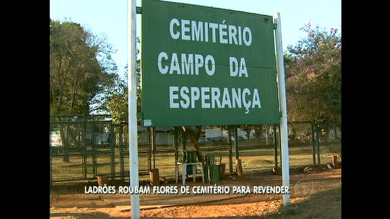 Flores, jarros e objetos somem dos túmulos de cemitério em Brasília ...