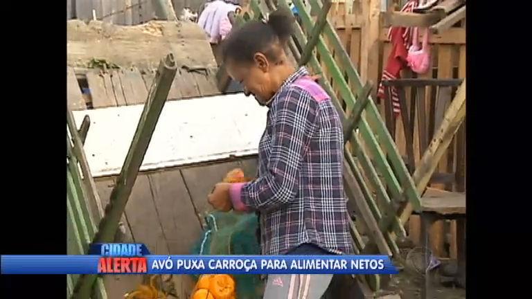 Após tragédia familiar, avó puxa carroça para sustentar os netos ...