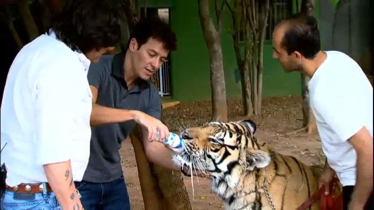 Faro visita empresário milionário que tem um zoológico no quintal ...