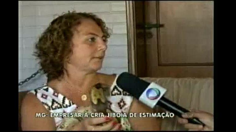 Jiboia é criada como bicho de estimação por mineira - Minas Gerais ...