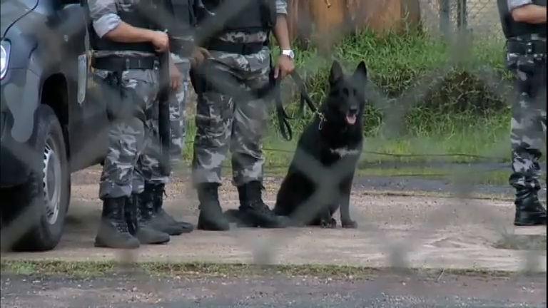 Polícia procura 20 detentos que fugiram de presídio no Pará ...