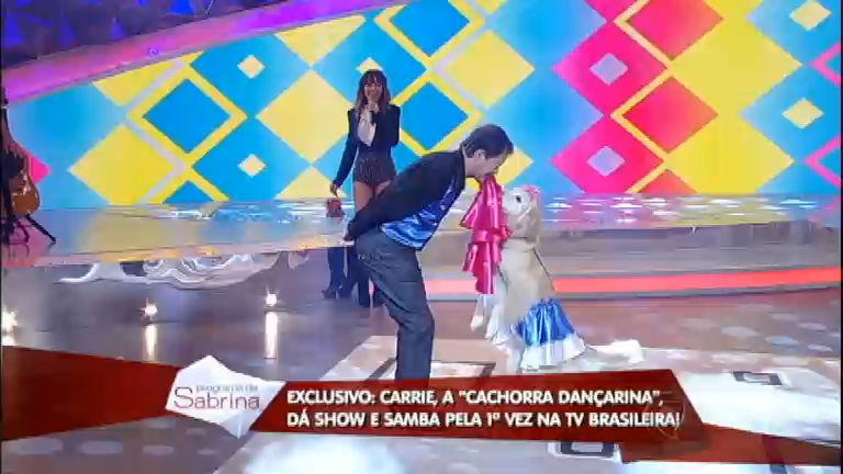 Cachorra dançarina cai no samba e dá show no palco do Programa ...