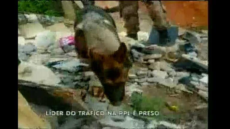 Adesivo De Cabeceira Infantil ~ Líder do tráfico de drogasé detido na Pedreira Prado Lopes Minas Gerais R7 MG no Ar