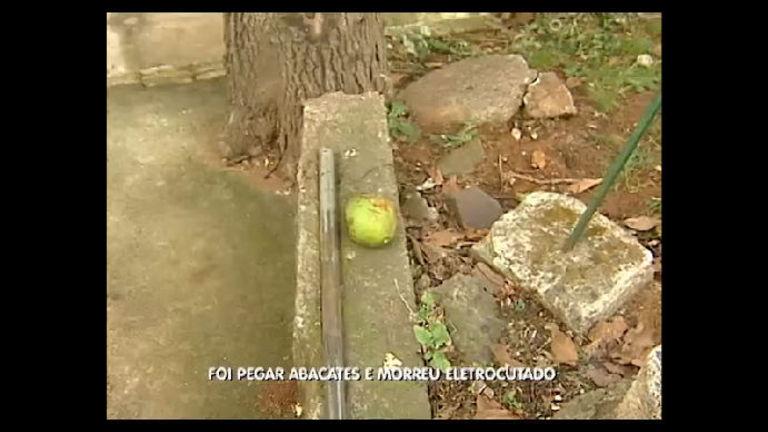 Foi pegar abacates e morreu eletrocutado