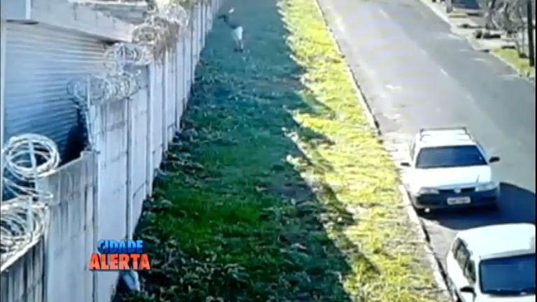 Câmeras de segurança registram fuga de estuprador de ...