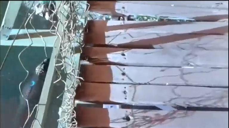 Ponte ameaça cair sobre lago cheio de jacarés no Rio de Janeiro