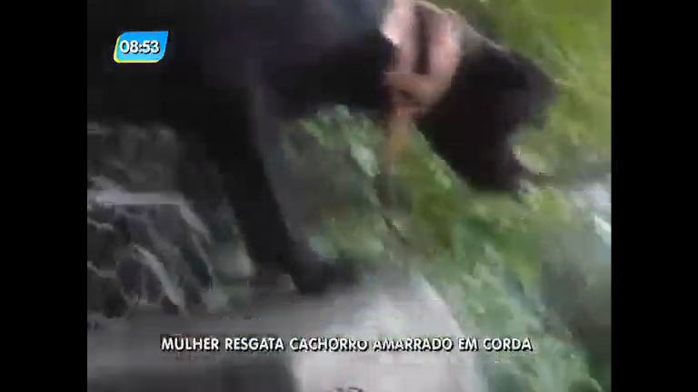 Mulher resgata cachorro amarrado em corda na avenida Niemeyer ...