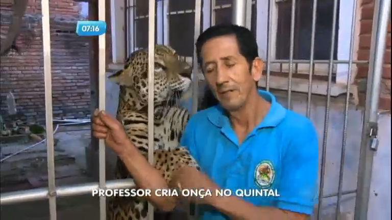 Onça é criada no quintal de casa na fronteira do Brasil com a Bolívia