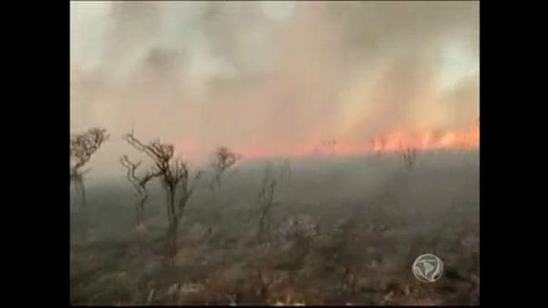 Incêndio atinge área verde próxima a Santa Maria