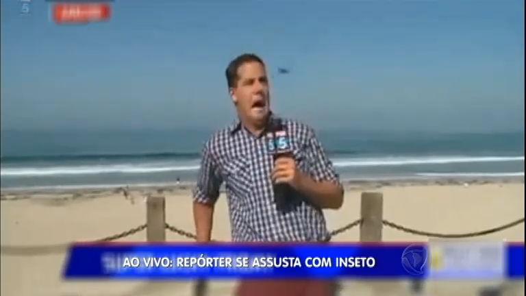 Ao vivo, repórter se assusta com inseto e vídeo vai parar nas redes ...