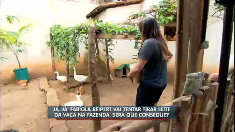 Em clima de estreia da Fazenda, Fabíola tenta conviver com animais do campo