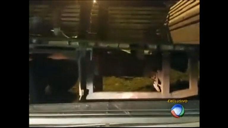 Polícia faz a maior apreensão de crack da história do DF - Distrito ...