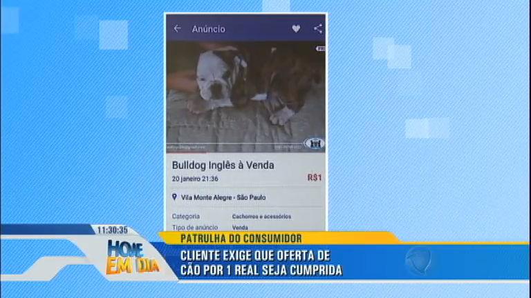 Patrulha do Consumidor: canil oferece cachorro por R$ 1, mas não ...