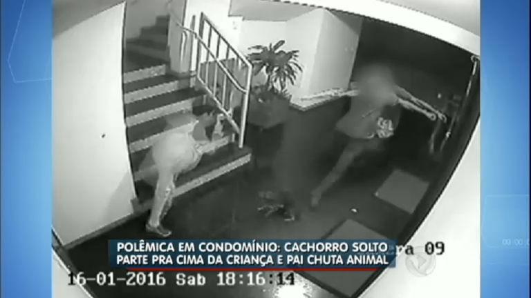 Polêmica: pai reage para proteger filho e mata cachorro - Notícias ...