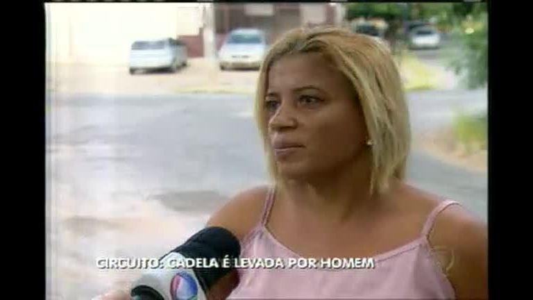 Cadelinha é roubada durante passeio - Minas Gerais - R7 MG Record