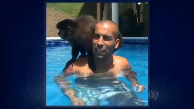 Pingou na Rede: Emerson Sheik curte folga na piscina com macaquinha de estimação