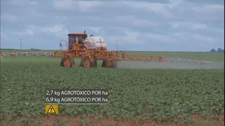 Perigo invisível: uso indiscriminado dos agrotóxicos no Brasil coloca ...
