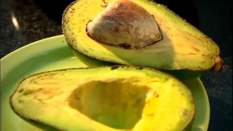 Versátil e saudável: descubra os Mitos e Verdades do abacate ...