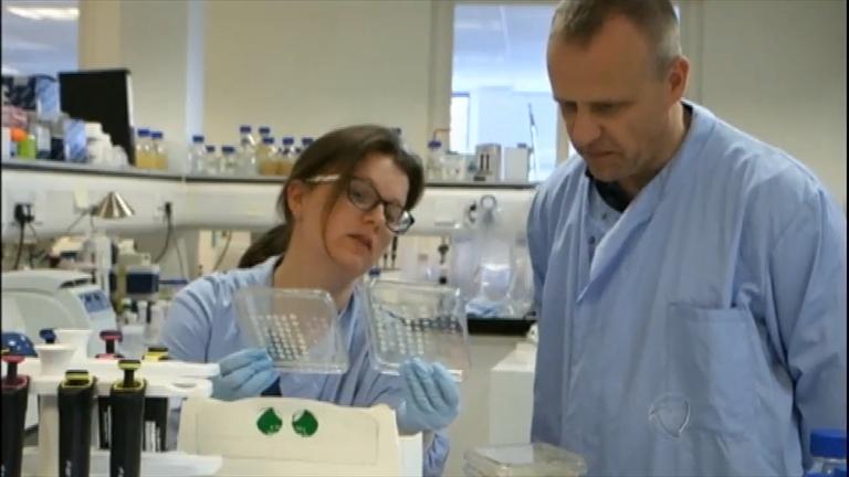 EUA identificam bactéria resistente a todos os tipos de antibióticos