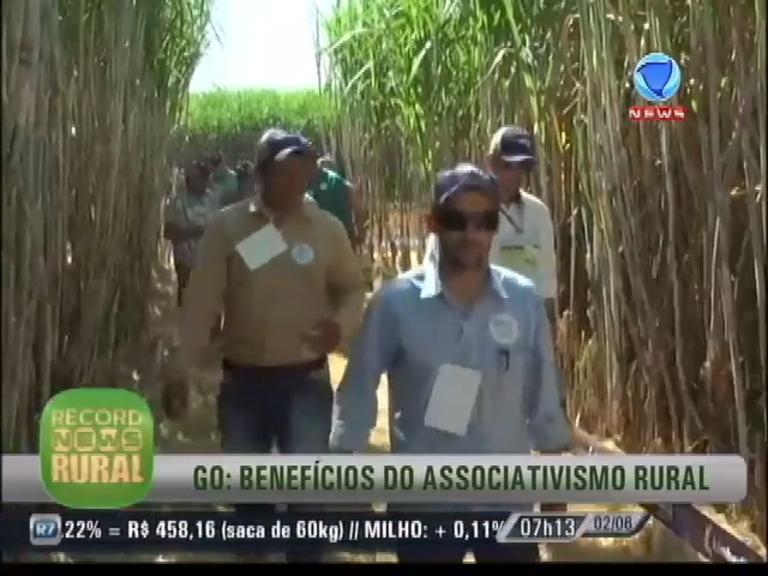 Record News Rural: agricultores de Goiás dão bom exemplo de ...