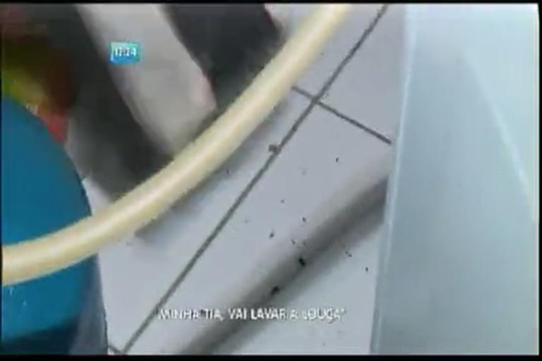 Moradores desesperados com infestação de insetos - Bahia - R7 ...