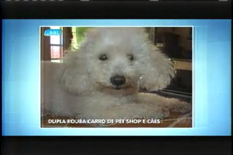 Dupla rouba carro de pet shop e leva cães em Contagem (MG ...
