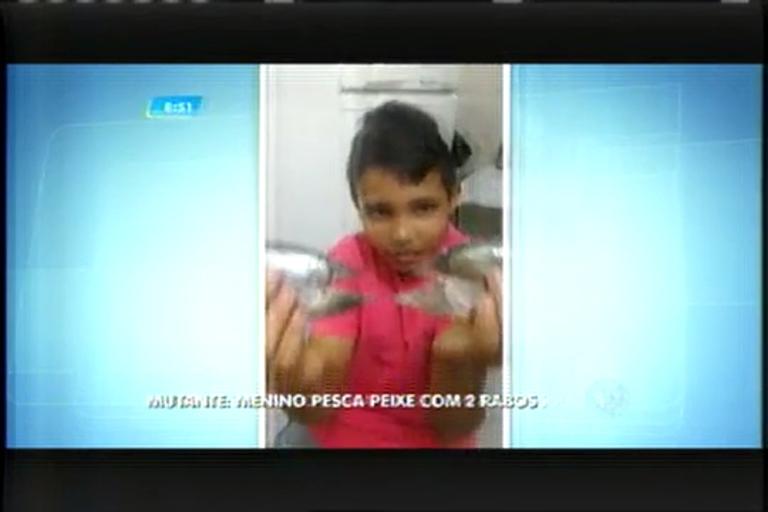 Menino de 11 anos pesca peixes com duas caudas em Varginha (MG)