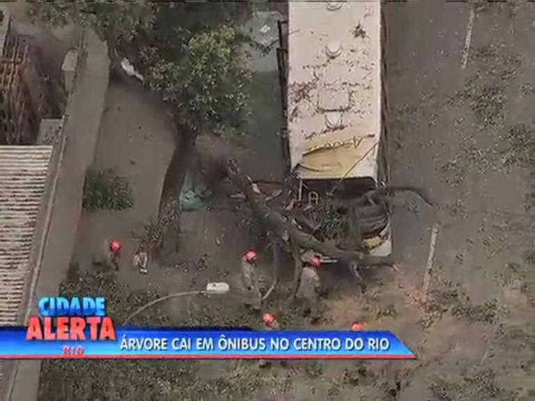 Queda de árvore deixa 2 feridos no Centro - Rio de Janeiro - R7 ...