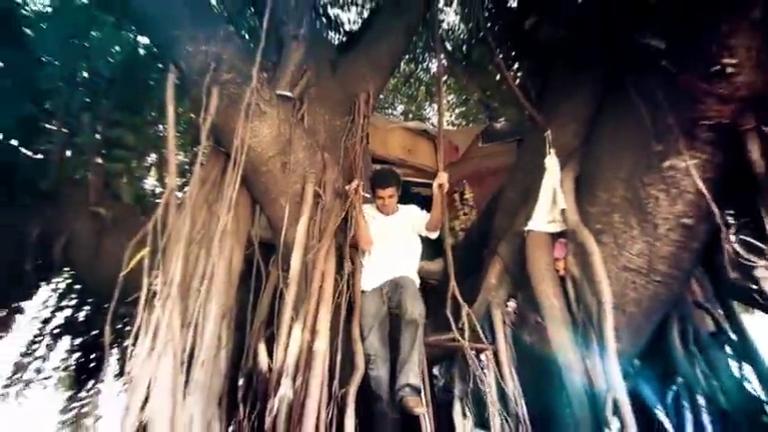 Casa na árvore e garotinho superdotado são atrações do Domingo ...