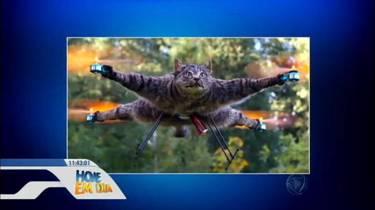 Bizarro! Holandês transforma o gato falecido em um drone ...
