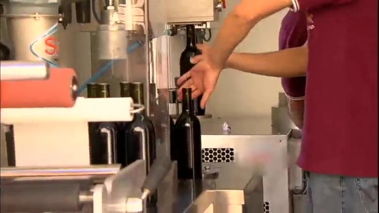 Idolos Kids 2012 Tecnologia inédita ajuda pequenos produtores de ...