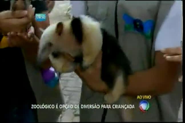 Zoológico é opção de diversão para a criançada - Bahia - R7 Bahia ...