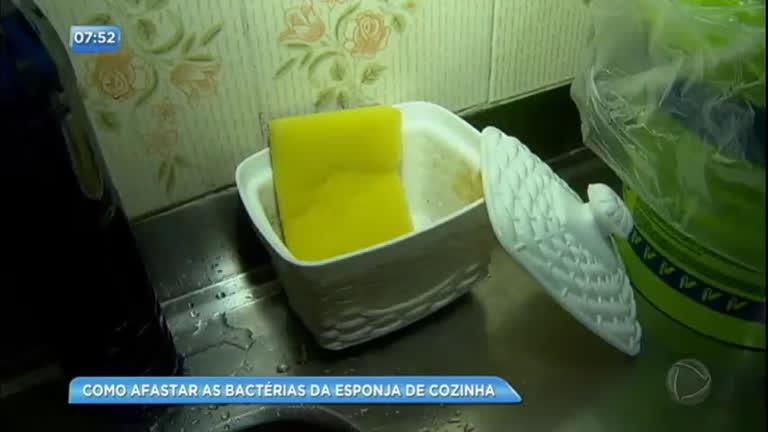 Dr. Bactéria mostra como higienizar a esponja de maneira adequada