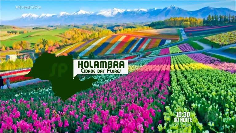 Cidade Das Flores Encanta Pelo Seu Colorido No Interior De Sp
