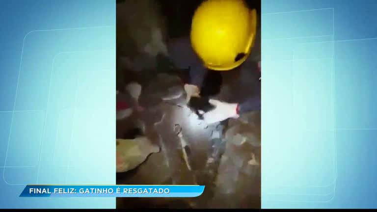 Bombeiros resgatam gatinho entalado em cano