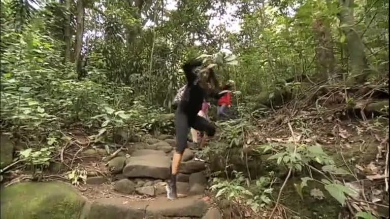Conselho do Meio Ambiente aprova 4 trilhas no Parque Ecológico ...
