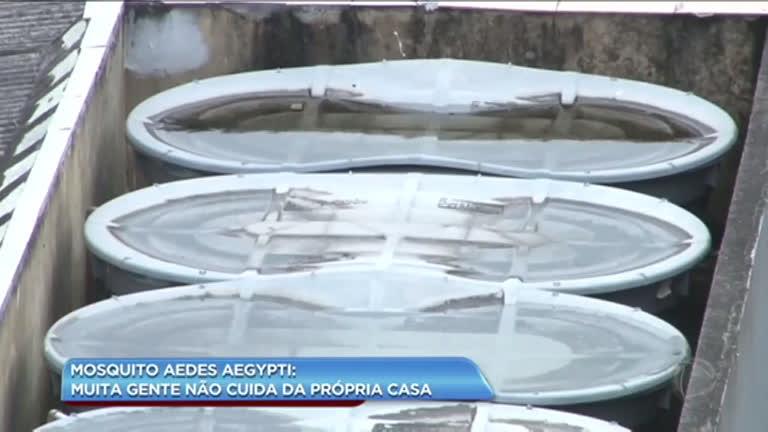 Caixas d'água abertas podem ser criadouros de mosquito transmissor de dengue e febre amarela